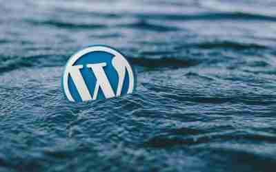 What Is WordPress? What Websites Can We Make With WP?